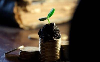 Płynność finansowa – lekarstwo na przetrwanie firmy w czasach kryzysu gospodarczego